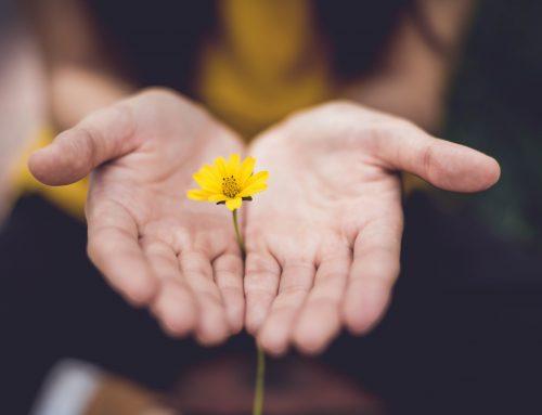 Odpuščanje je odločitev srca